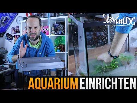 Aquarium einrichten (SteVinLOG #7)