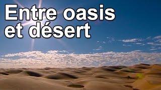 Entre oasis et désert