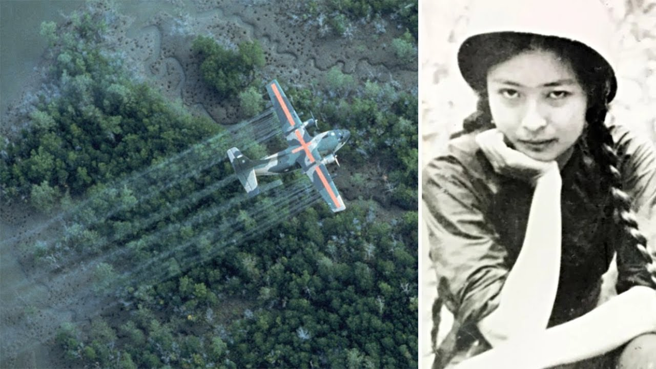 'If she dies, everything would stop': Race against time for 'world's first' Agent Orange victim