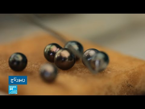 العرب اليوم - شاهد: كيفية استخراج