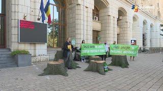 Acţiune de protest în faţa Ministerului Mediului pentru interzicerea exploatărilor forestiere