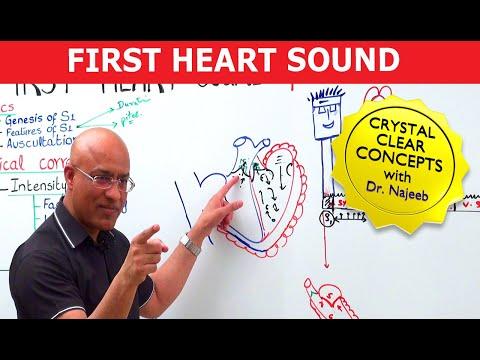 Mastering S1 – Heart Sounds & Murmurs