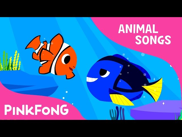 Clown Fish, Bluetang | Tropical Fish | Animal Songs | Pinkfong Songs for Children