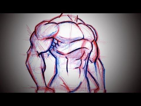 mp4 Bodybuilding Sketch Logo, download Bodybuilding Sketch Logo video klip Bodybuilding Sketch Logo