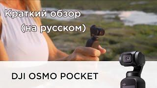 Представляем DJI Osmo Pocket (на русском)