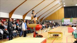 preview picture of video 'Leonie de Gym Equilibre Chantonany au Saut à Mortagne S/Sèvre le 25 01 2015'