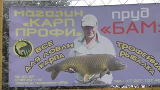 Рыбалка в саратове на пруду дубки
