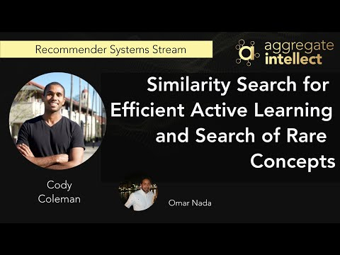 Similarity Search for Efficient Active Learning and Search of Rare Concepts