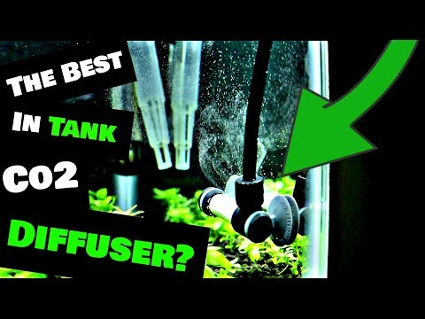 The Best In Tank Co2 Diffuser ( NilocG Atomizer Review! )