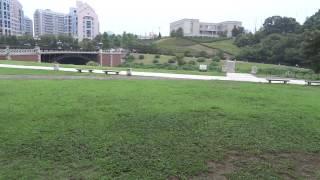 長池公園のイメージ