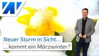 wetter.net spezial: Der Februar ist europaweit vielfach rekordwarm wie auch der ganze Winter. wetter.net-Zuschauer verwundert das nicht, denn wir hatten schon im August 2019 den warmen Winter 2019/2020 angekündigt:   https://www.youtube.com/watch?v=Km7rCI8FmvU&t=69s und das auch regelmäßig untermauert: https://www.youtube.com/watch?v=a8tLGem_71U&t=1s  https://www.youtube.com/watch?v=hCYx4IA2qfM   Gibt es vielleicht noch Hoffnungen auf einen Märzwinter? Wir haben Euch den aktuellen Märztrend mitgebracht!     Unsere Webseite: https://wetter.net  Besucht uns auch bei:  Facebook: http://bit.do/facebookwetter Instagram: http://bit.do/instagramwetter Twitter:     http://bit.do/twitterwetter