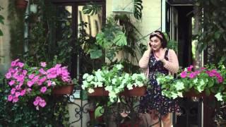 Українська реклама Київстар (2015). Бабуся-поетеса