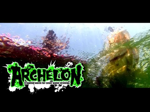 "2016 NEW PRODUCT ""ARCHELON"" / ""アーケロン"" 実釣解説"