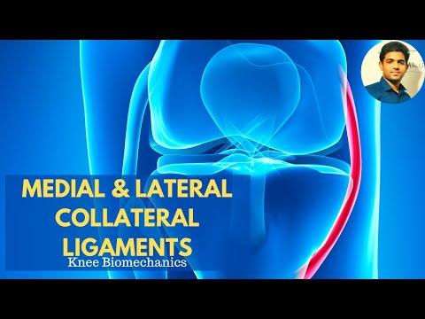 Articulațiile durerii inferioare a spatelui