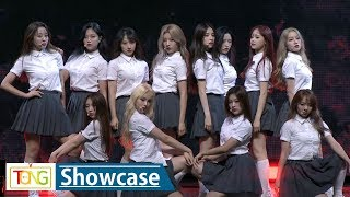 LOONA(이달의 소녀) 'favOriTe' Showcase Stage (Hi High, 하이 하이, + +, 플러스 플러스)