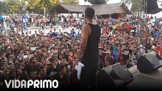 """Papi Wilo   """"en Vivo"""" Suegra Y Amor De La Calle"""
