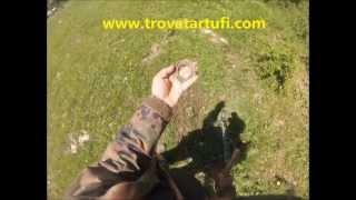 preview picture of video 'Divertimento con il metal detector'