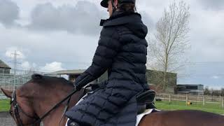 EQUETECH AW19 Collection Equestrian Fashion