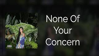 Jhené Aiko   None Of Your Concern [INSTRUMENTAL]