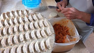 Amazing Skills of Handmade Dumpling Master - Korean Street Food / 수제만두 달인