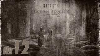 STALKER Тайные тропы 2 + Autumn Aurora 2 №12