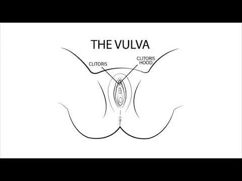 Sex und haarige Porno