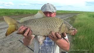 Жесть, чуть не убило на рыбалке. Сазан клюет все крупнее и крупнее.