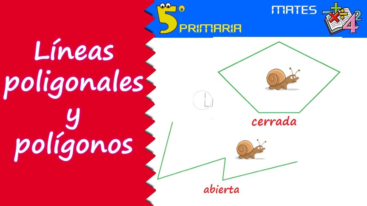 Líneas poligonales y polígonos. Mate, 5º Primaria. Tema 8