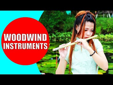 Woodwind Instruments for Children - Woodwind Instruments Sounds and Demonstration | Woodwind Family