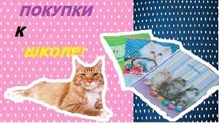 HOUL:  ПОКУПКИ К ШКОЛЕ! / КСЮША CAT!