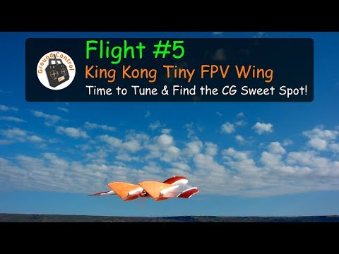 flight-5--king-kongldarc-tiny-wing-450