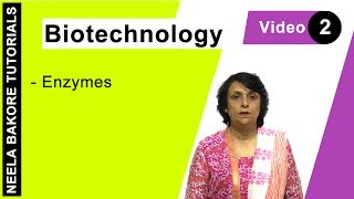 Biotechnology - Enzymes