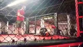 MMA Fight: GIRL VS GUY