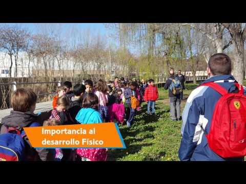 Video Youtube CEIP Alto Aragón