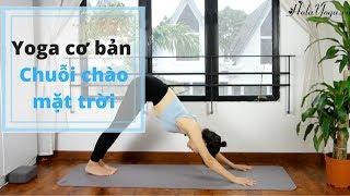 Yoga Cơ Bản - Chào Mặt Trời - Lưu Thông Máu Từ Gót Chân Đến Đỉnh Đầu