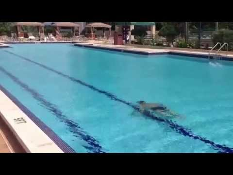 Download link youtube incredible underwater dive 100 ft for 20 ft garden pool