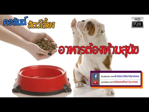 พริกไทยดำกับเวิร์ม