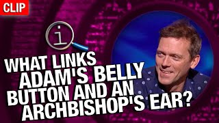 QI | What Links Adams Belly Button And An Archbishops Ear?
