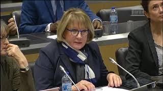 Commission du développement durable. Table ronde sur l'accès aux services publics dans les terri