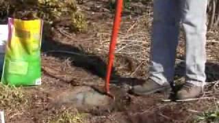 Virginia Farm Bureau - In the Garden - Soil Preparation