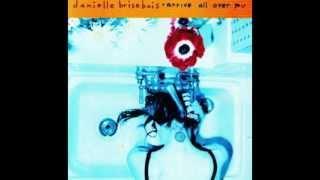Did I Lead You On - Danielle Brisebois