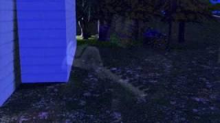 Sims 2 - Charlotte Martin - Beautiful Life