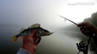 Рыбалка на берегу оки в тульской области