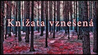 Video SVATOBOR - Knížata Vznešená (VIDEO S TEXTEM)