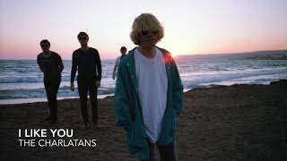 I Like You - The Charlatans