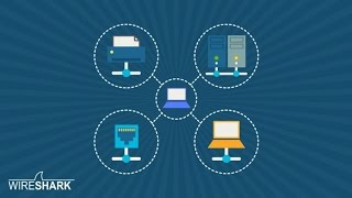 The Complete Wireshark Course: Go from Beginner to Advanced!