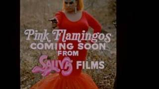 Picture of a movie: Pink Flamingos