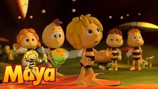 The Birth Of Maya - Maya The Bee - Episode 1