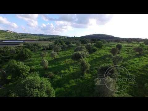 סרטון שמציג את נופי ארץ ישראל כולה מזווית שטרם ראיתם!
