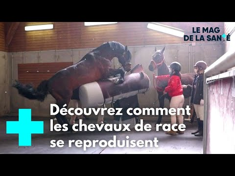Rencontre wordreference